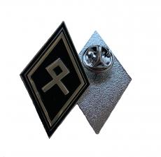 Odal Rune Pin