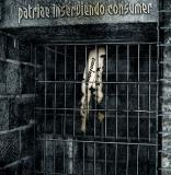 In Anerkennung- Patriae inserviendo consumer 2-CD